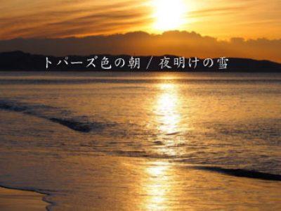 2曲入り最新CD 発売中!